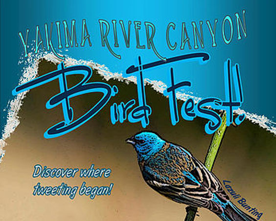 2017,ellensburg,event,yakima,river,canyon,bird,fest