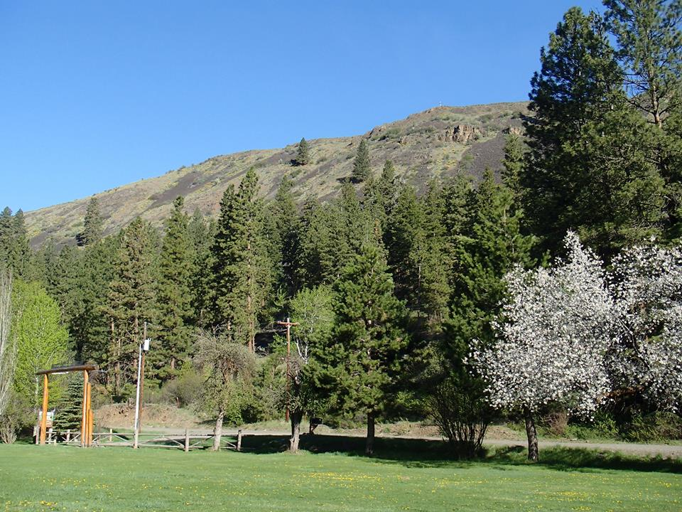 lazy,f,camp,&,retreat,hotels,in,ellensburg