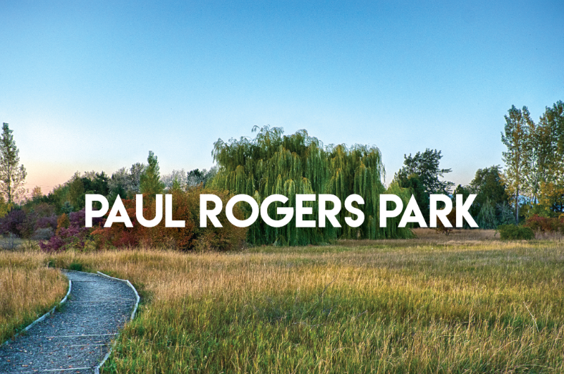 newsletter:,everything,you,need,to,know,for,your,trip,to,paul,rogers,park!