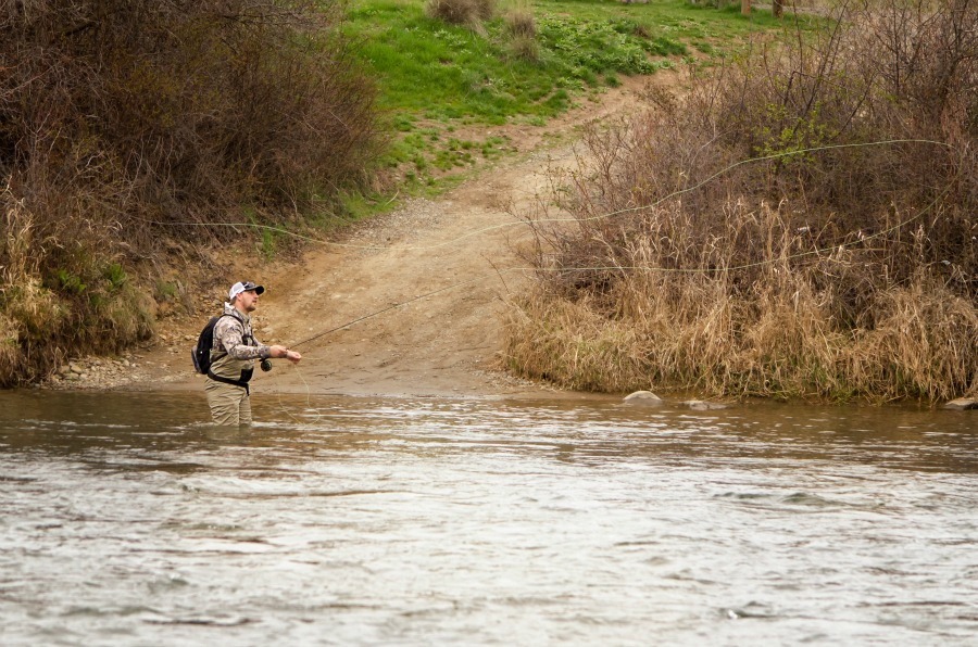 Fly fishing and rivers in ellensburg wa for Washington state fishing license online